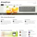 Web corporativa limpia – Broadscope